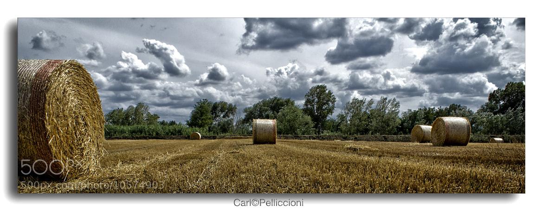 Photograph Bales by Carlo Pelliccioni on 500px