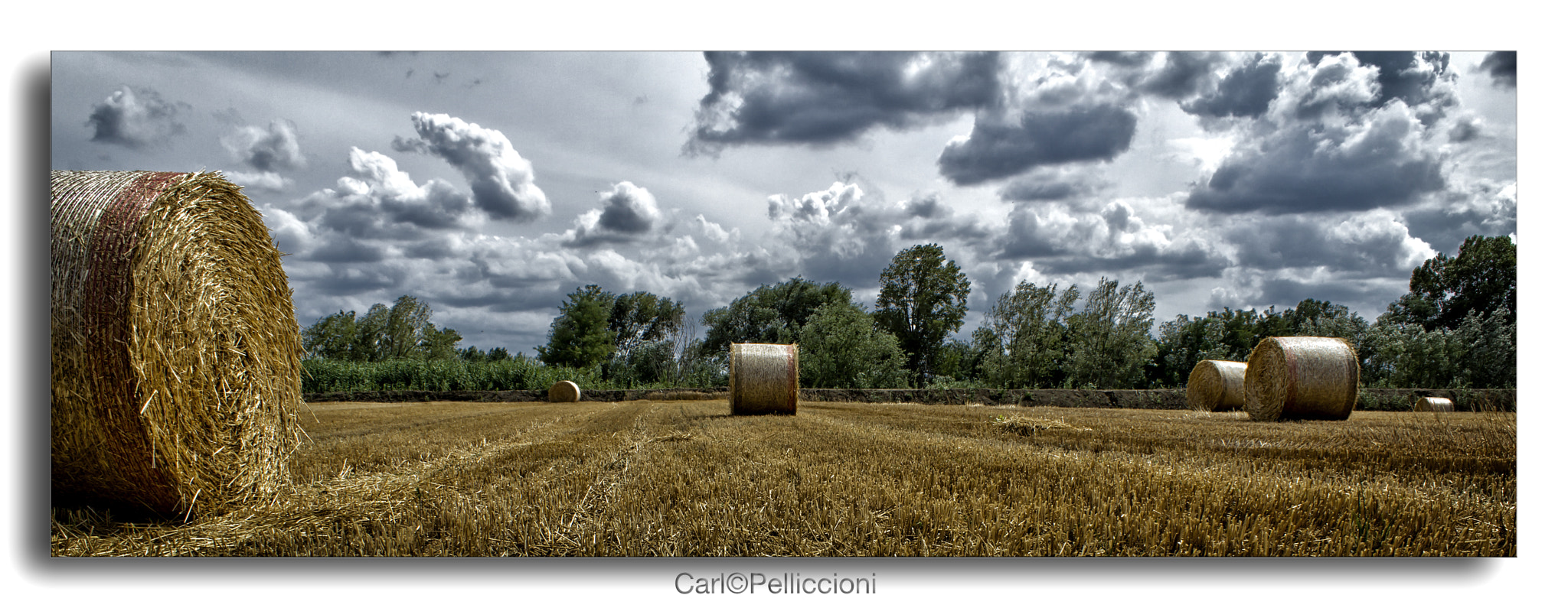 Photograph Bales by Carlo Pelliccioni on 500px