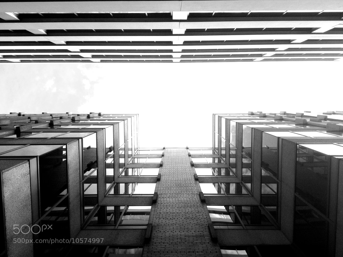 Photograph View from the ground by Jimmy Daly on 500px