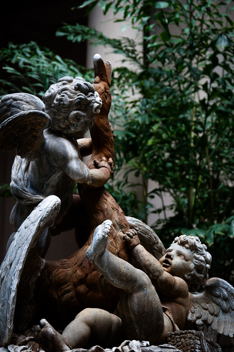 Photograph A sculpture by Thiago Leal on 500px