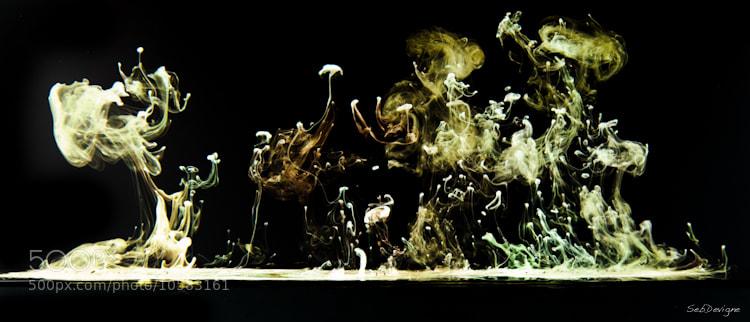 Photograph Méduses by Sebastien Devigne on 500px