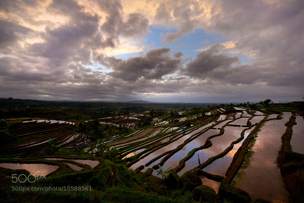 Photograph Morning@Jatiluwih, Bali. by Lee Seesy on 500px