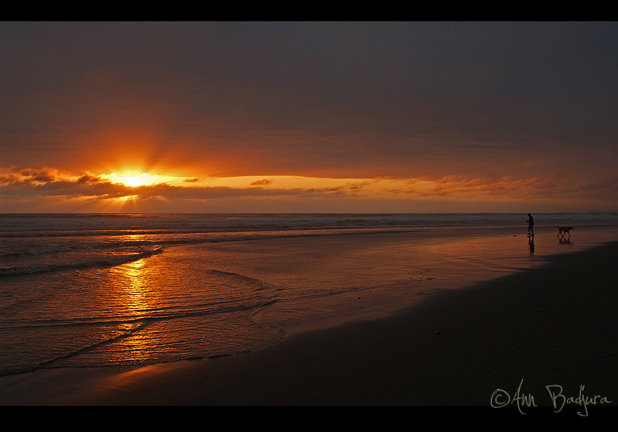 Photograph Sunset at the Oregon Coast by Ann Badjura on 500px