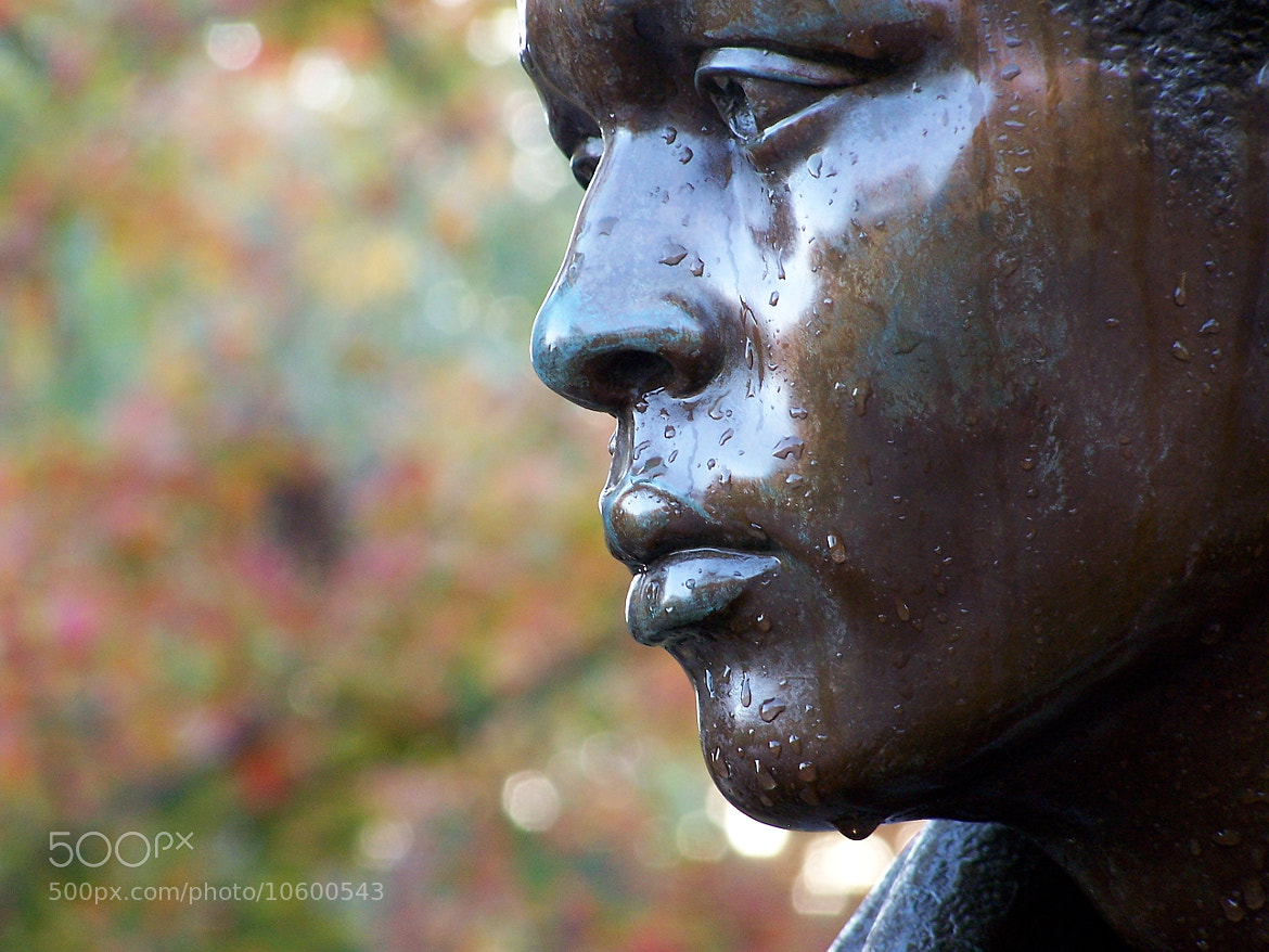 Photograph Vietnam Memorial 2001 by Tony Cook on 500px
