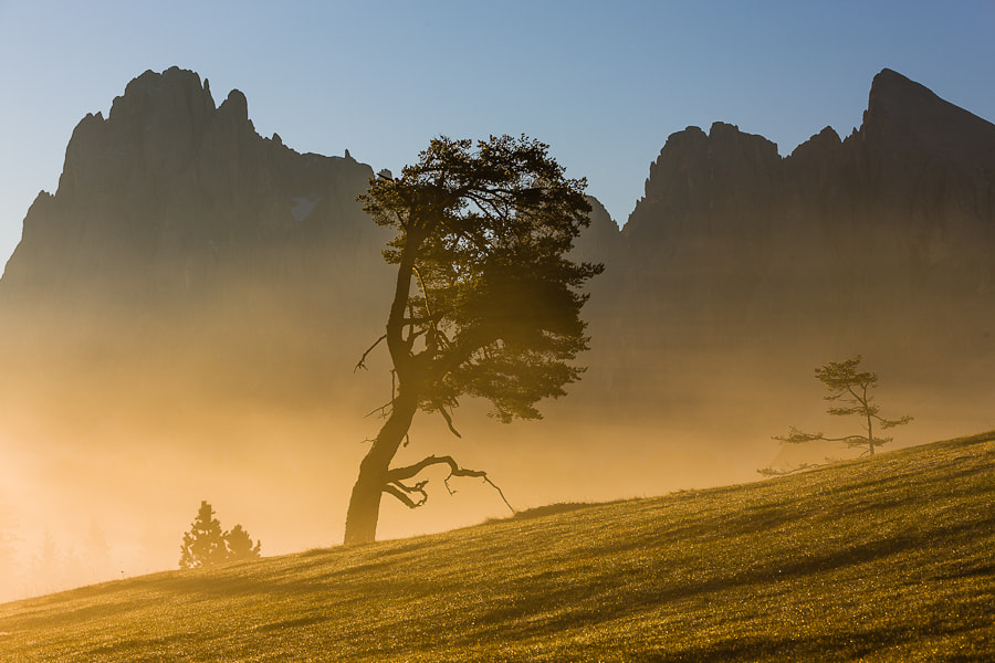 """<a href=""""http://www.hanskrusephotography.com/Workshops/Dolomites-Workshop-Oct-8-12-12/18012376_JfTs4d#!i=1865253563&k=J4r7WPg&lb=1&s=A"""">See a larger version here</a>  This photo was taken during a photo workshop that I led in the Dolomites in October 2011."""