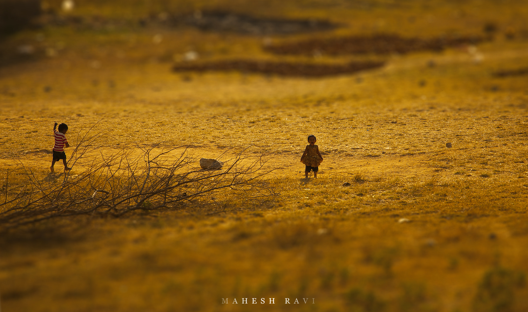 Photograph I am Coming by Mahesh Ravi on 500px