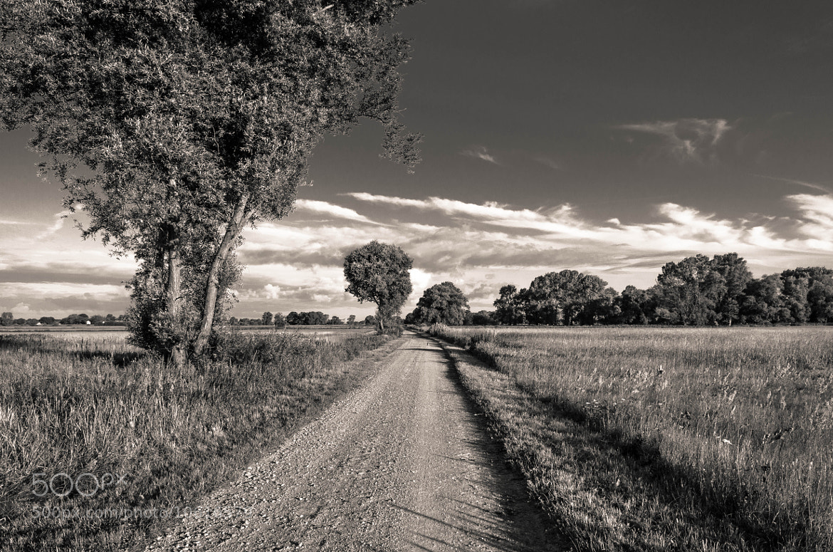 Photograph Long way home II by Eugen Gaßmann on 500px