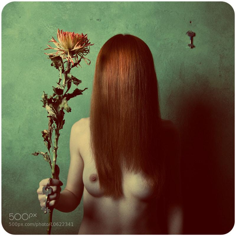 Photograph insomnia by Oleg V. Dragon Semenets on 500px