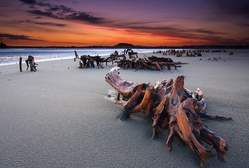 Photograph Relics by Chris Gin on 500px