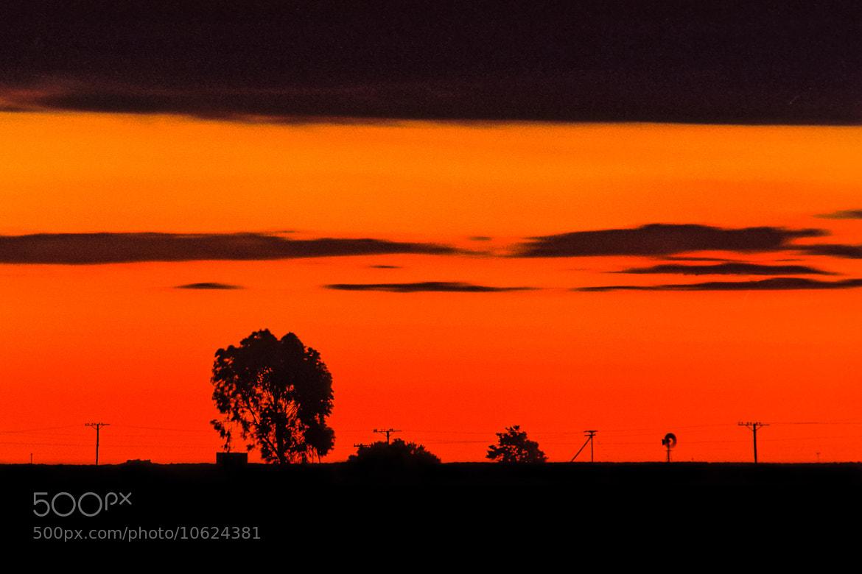 Photograph Schoonspruit Sunset by Richard Davis on 500px