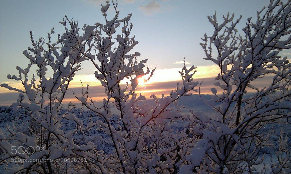Photograph Izmit / Turkiye by Selda K on 500px