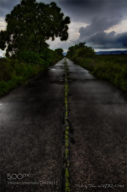 Photograph Green line by Zdeno Kajzr on 500px