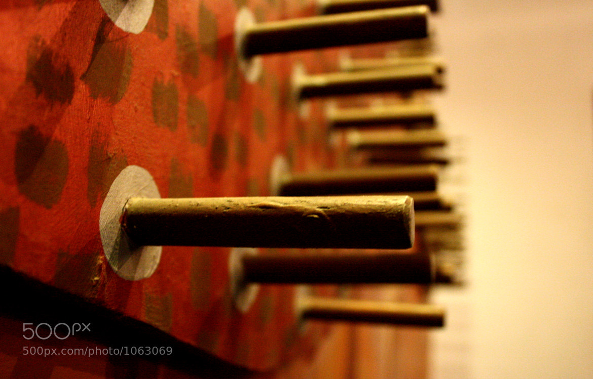 Photograph Hold on to the Iron Rod by Neha Patel on 500px