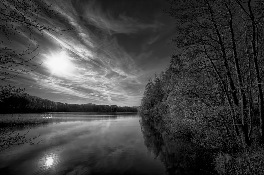 A lake in bw