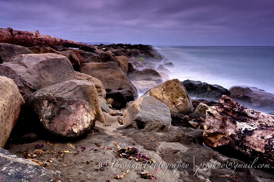 Halfmoon Bay
