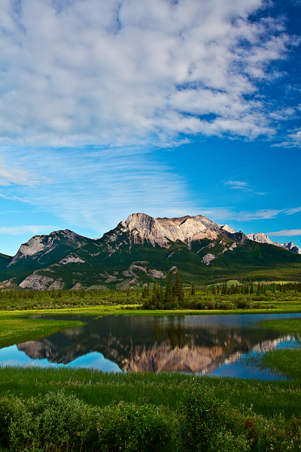 Photograph Canadian Rockies, Jasper National Park by ya zhang on 500px