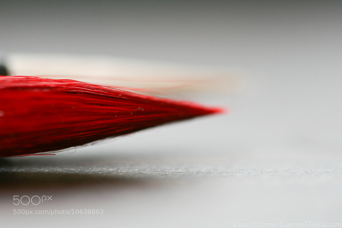Photograph Paint it red by Laura P on 500px