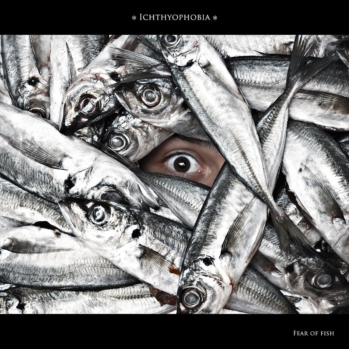 Photograph Ichthyophobia - Fear of fish by Rui Silva on 500px