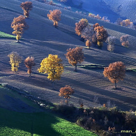 Landscape by Giuliano Mangani (ceratofillum)) on 500px.com