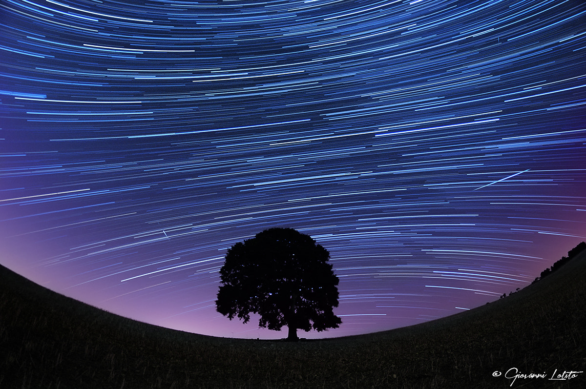 Photograph Startrail by Giovanni Lotito on 500px
