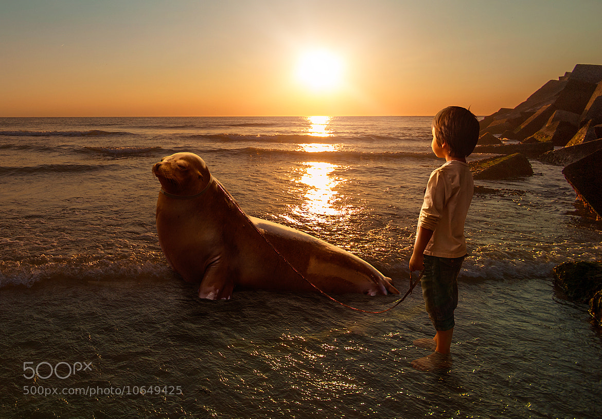 Photograph Who let the dog out... by Adrian Sommeling on 500px