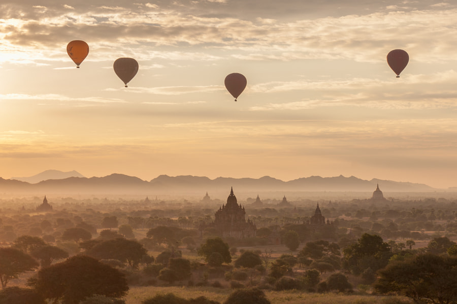 Photograph Balloons over Bagan by Wolfgang Wörndl on 500px