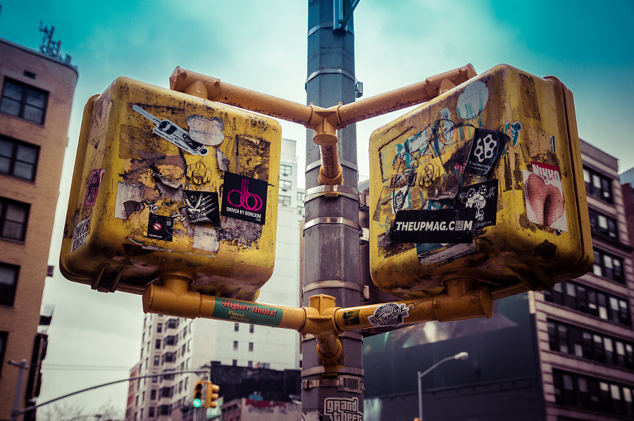 Photograph Crossing Signals by Andy Roth on 500px