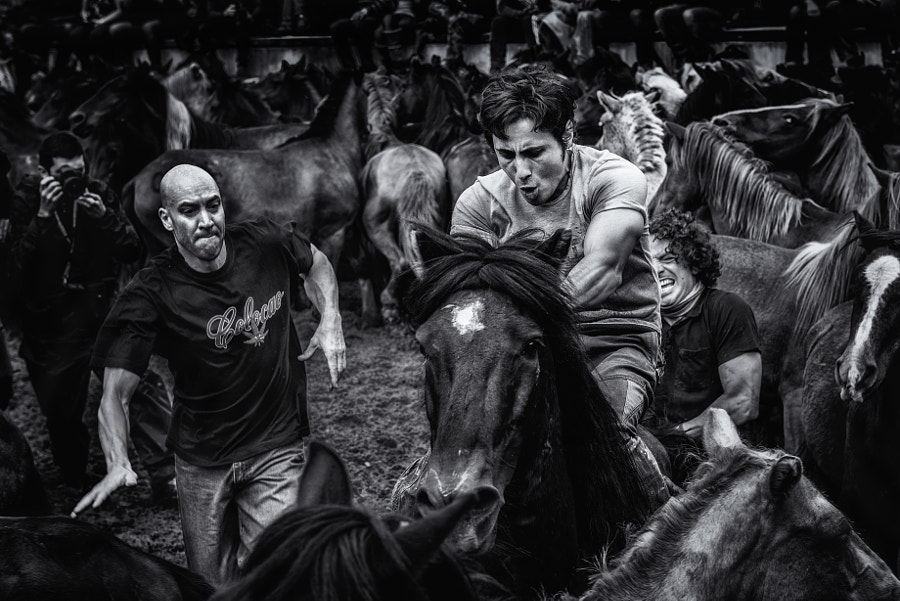 Photograph La batalla by alfonso maseda varela on 500px