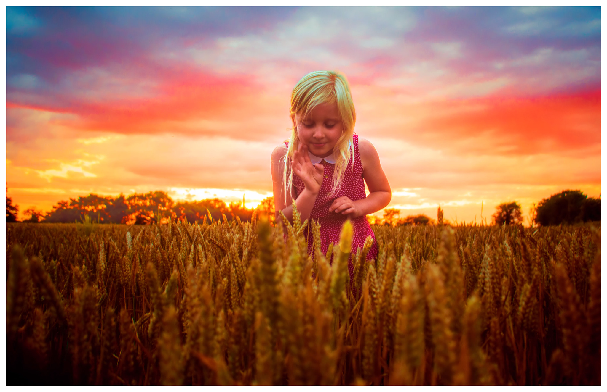 Photograph CHILD OF THE CORN.... by Jason Saddler on 500px