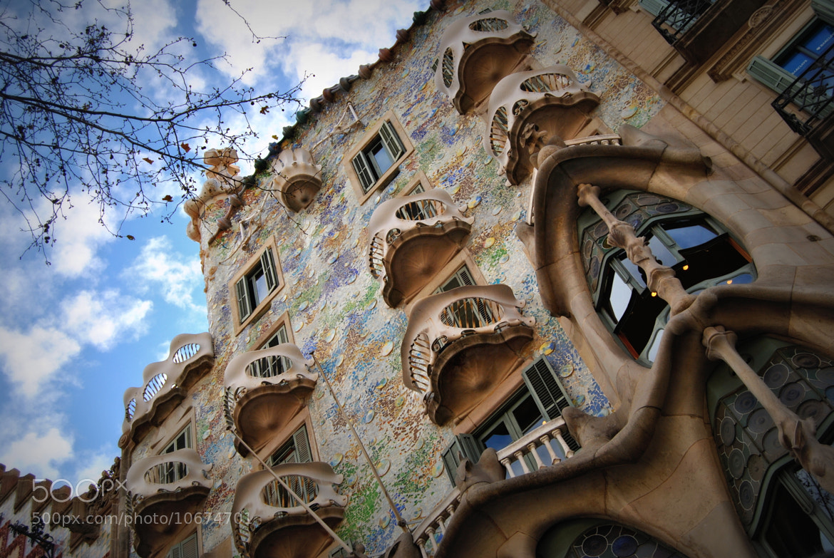 Photograph Casa Batlló; architecture of Gaudí in Barcelona by Anna Garcia on 500px