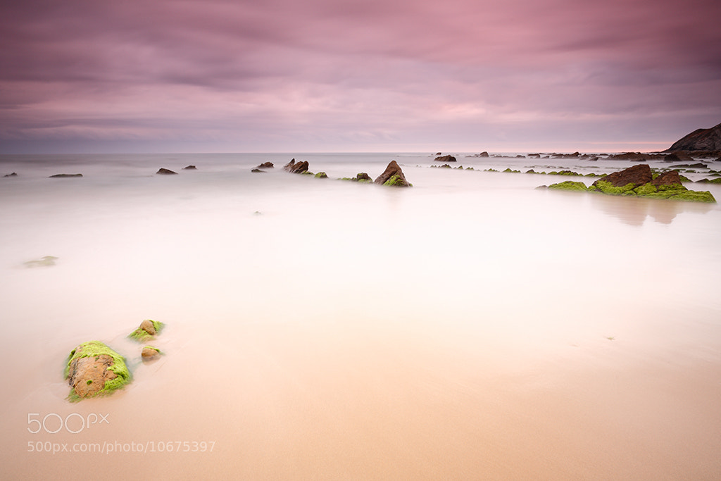 Photograph Barrika en rosa. by Jorge  Alonso on 500px