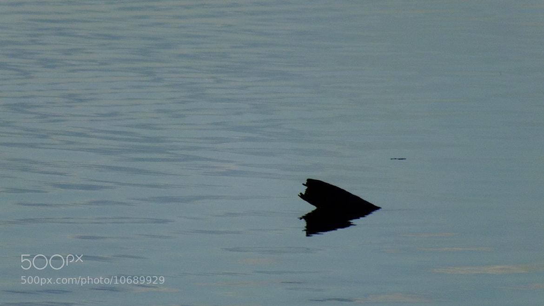Photograph Water UFO by Eduardo Rolim on 500px
