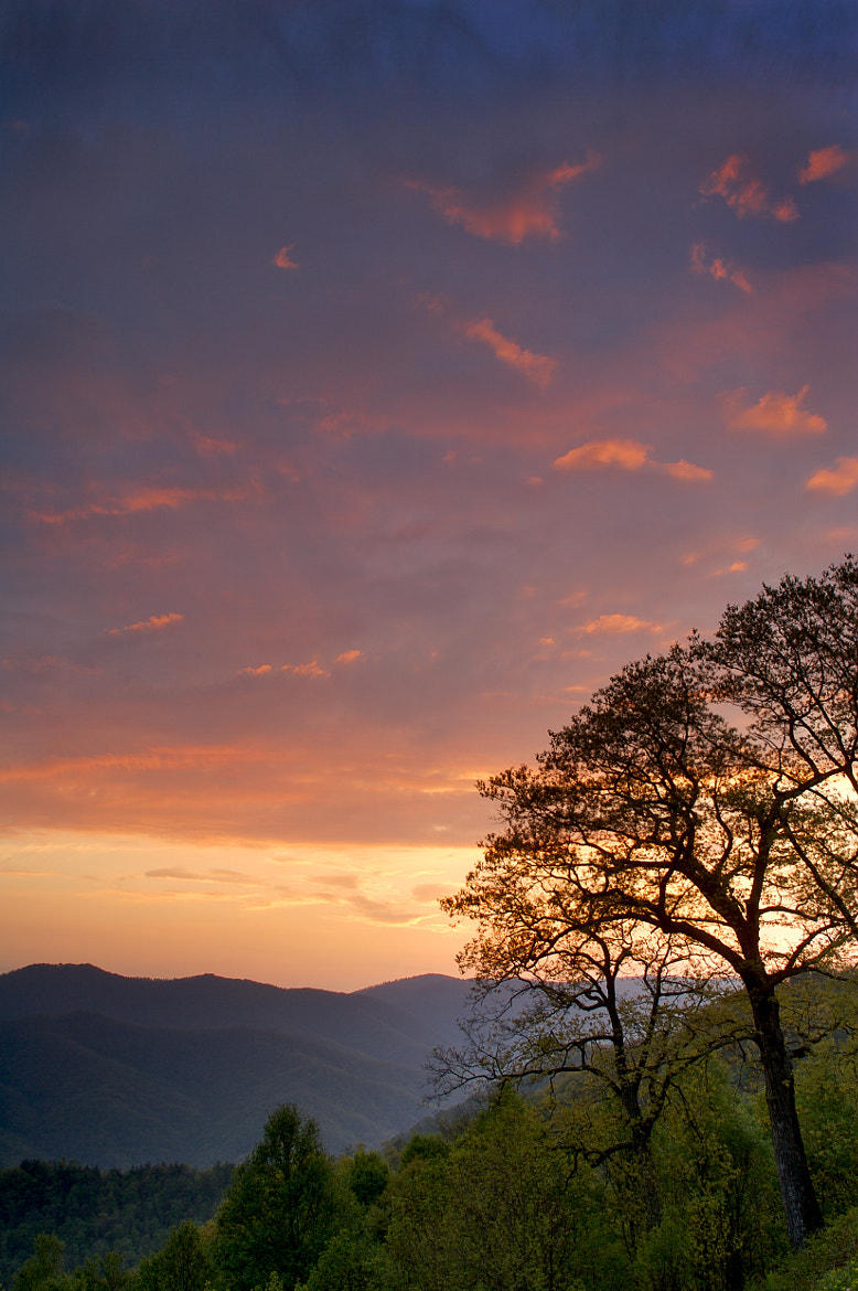 Photograph Peaceful Smoky Mountain by Tim Bloomquist on 500px