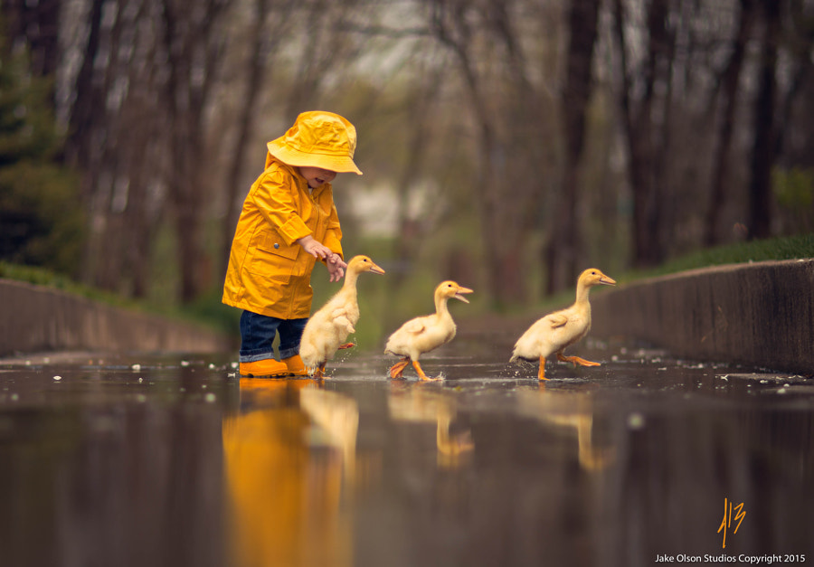 Photograph Follow The Leader by Jake Olson Studios on 500px
