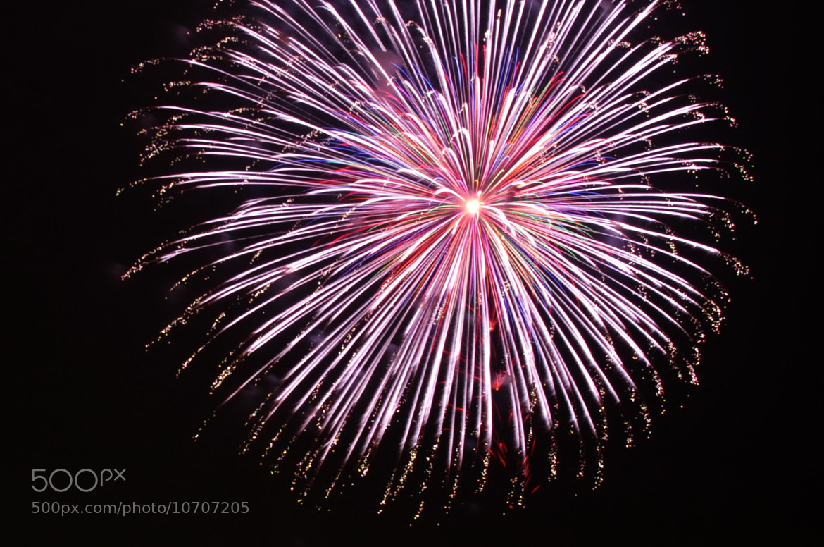 Photograph Fireworks in night sky -2 by KEN OHSAWA on 500px