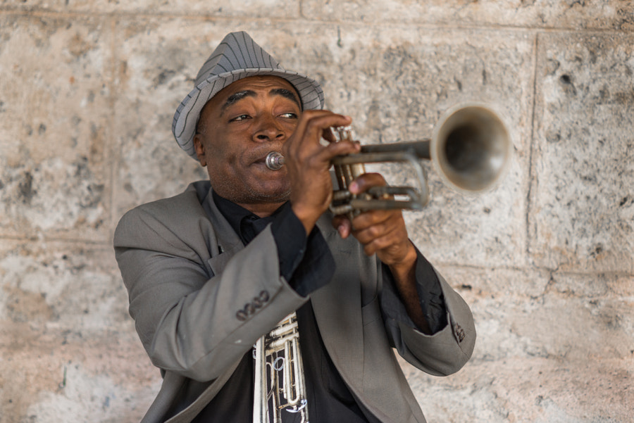 The Trumpet Guy