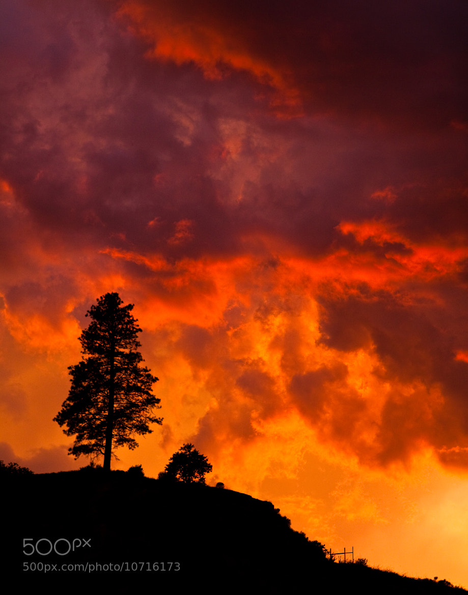 Photograph Storm at Sunset by Tristan Rayner on 500px