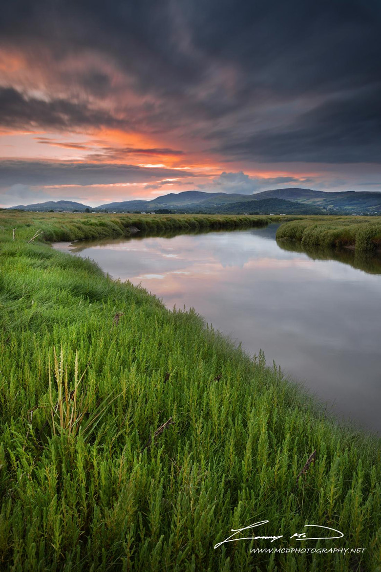 Photograph The Marshes Sunset by Tommy McDermott on 500px