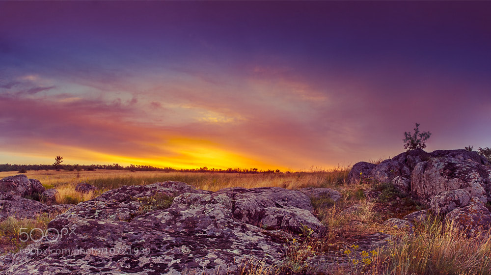 Photograph Sundawn at the Steppe by Dmytro Korol on 500px