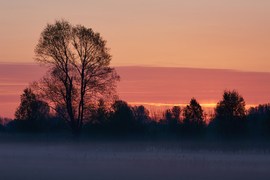 Sunrise near Schijndel