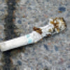 Cigarette dumps are left on the pavement