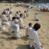 Costa Brava and martial artists