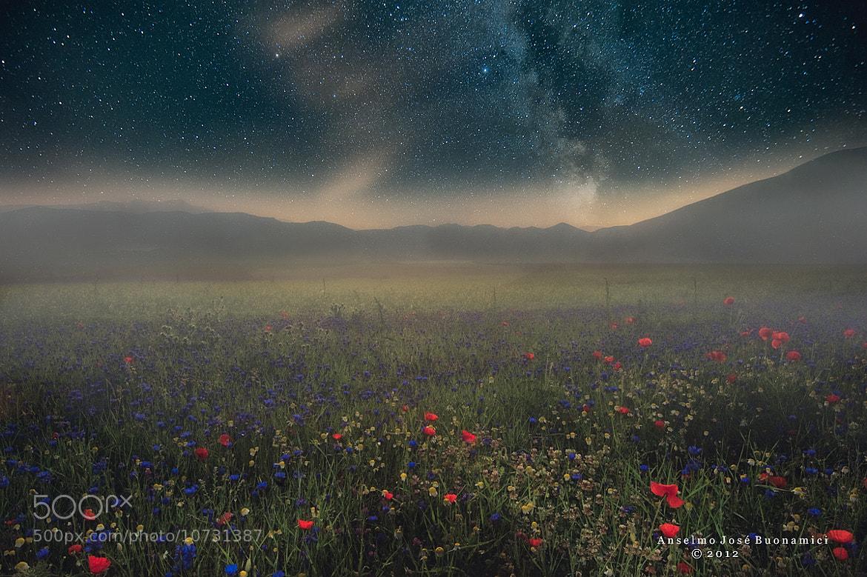 Photograph Terra di sogni by Anselmo José Buonamici Sànchez on 500px