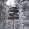 Signs in the forest of Oslo