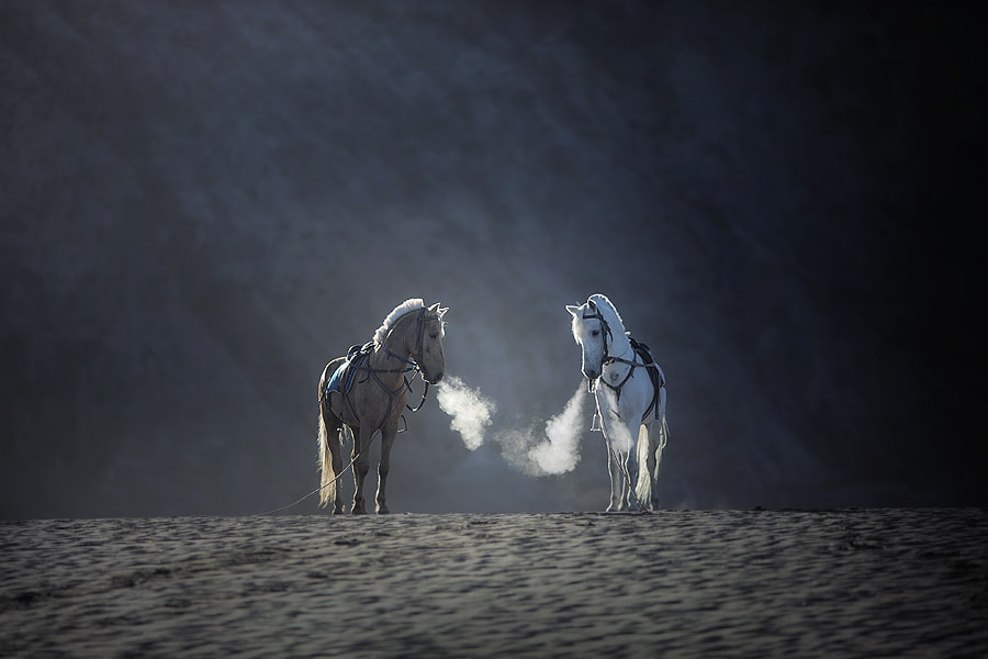 Photograph morning breath by asit  on 500px