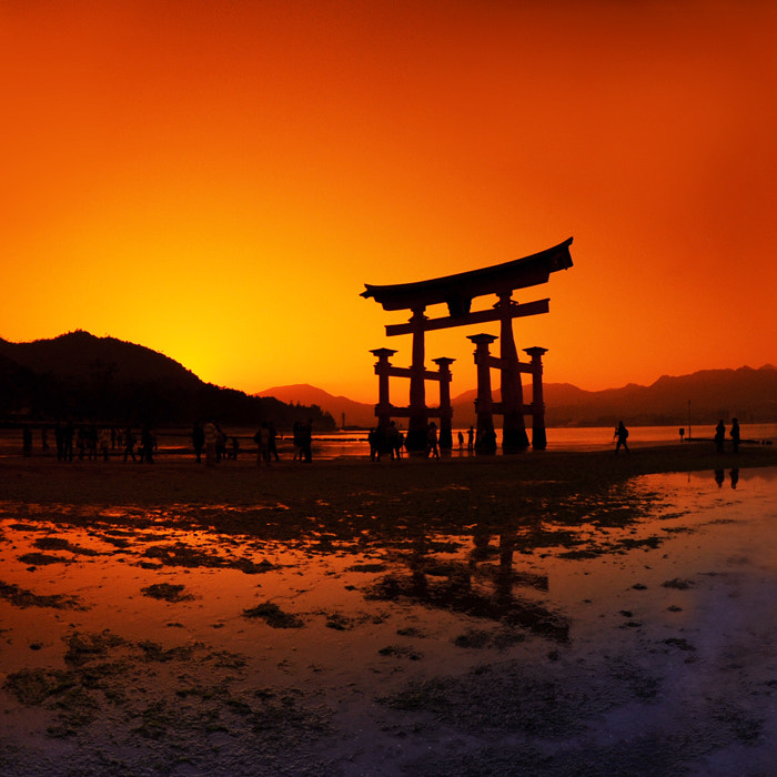 Photograph Torii, Miyajima, Japan by Ksenia Isakova on 500px
