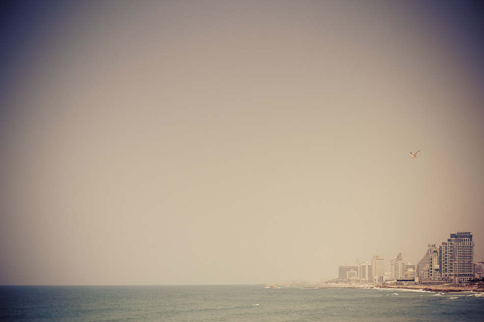 Photograph Tel Aviv by Michael Jacobs on 500px