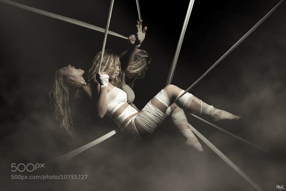 Photograph Webs of suffering by Mathieu CHATRAIN on 500px