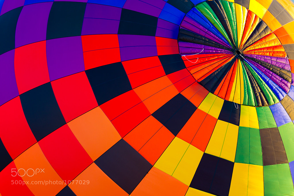 Photograph Hot Color by Mike Sanders on 500px