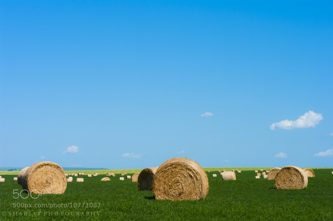 Photograph Hay Field by Navid S on 500px